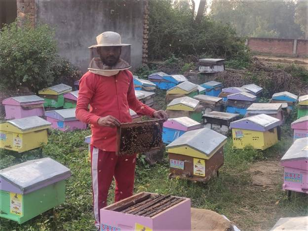 KVIC's Honey Mission Earns First Income for Migrant Workers