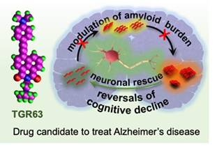 JNCASR  Scientists Develop a New Molecule for Treatment of Alzheimer's