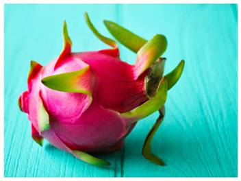 Gujarat CM gives Dragon fruit a new name 'Kamalam' for its resemblance to  lotus! - Times of India