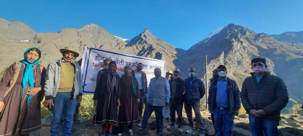 CSIR-IHBT makes history by introducing asafoetida (Heeng) cultivation in Indian Himalayan region